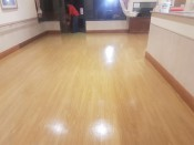 Vinyl Floor Cleaning 3